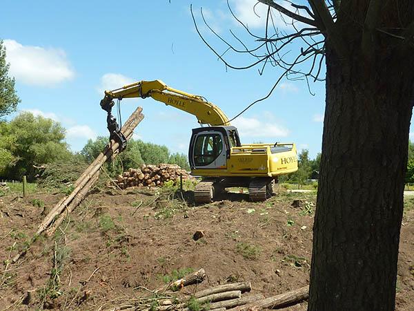 woodlot harvesting